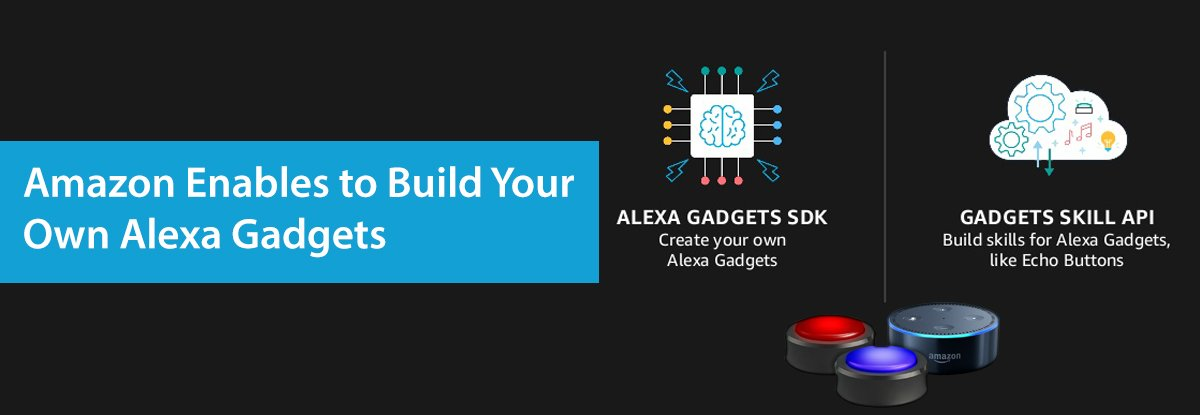 Amazon Alexa Gadget