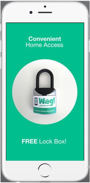 Dog Walking Mobile App