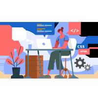 Top HTML/CSS MVP